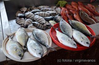 Kap-Verde-Santa-Maria-Fisch
